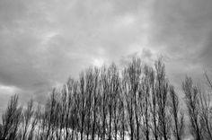 Winter Winter, Nature, Fotografia, Winter Time, Naturaleza, Nature Illustration, Off Grid, Winter Fashion, Natural