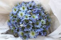 Image result for nigella wedding flowers