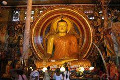 A   Buddha statue in Shri Lanka