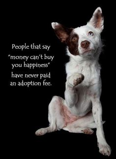 "People who say ""money can't buy you happiness"" have never paid an adoption fee."