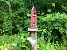 bed and breakfast for the birds