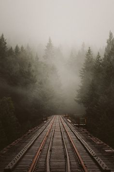 Train tracks on a foggy morning Vitrier Paris, Fuerza Natural, Foto Art, Train Tracks, Adventure Is Out There, Belle Photo, Pretty Pictures, Beautiful World, Beautiful Places