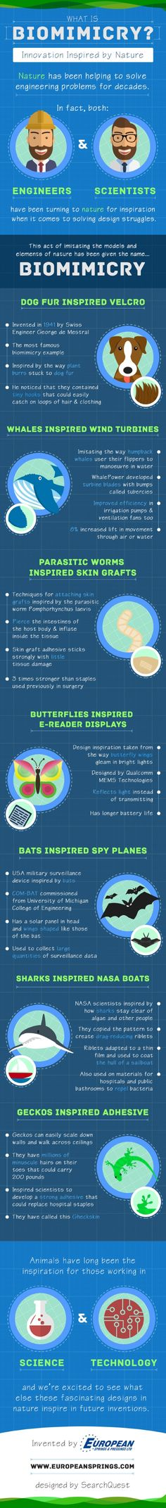 Did you know that sharks inspired NASA boats and that butterflies inspired e-readers? If the answer is no, then check out this well-informed and educational infographic that can tell you everything you need to know, created by European Springs & Pressings LTD. The infographic that looks at some of the best examples of nature inspired biomimicry and provides lots of fun facts, such as how Velcro was designed after dogs fur and spy planes were modeled after bat wings.
