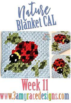 115 Beste Afbeeldingen Van Haken C2c Pixeldeken Crochet Patterns
