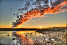 sunrise in the duck blind Best part of huntin!