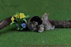 OOAK Dollhouse Miniature Pet Rabbit , 2 Babies w/nest, Flowers Handcrafted 1:12 #Handmade