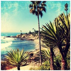 Laguna Beach! One day I would love to have a beach house here! Love the small town feel :)