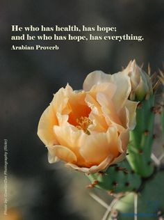 He who has health, has hope; and he who has hope, has everything. - Arabian Proverb