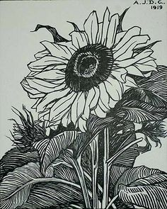 ✨ ANNA JULIE DE GRAAG, Dutch (1877-1924) - Sunflowers, Woodcut, 1919, edition unknown. 11 x 9 in. Signed and dated in the block. Signed in pencil.