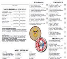 11 Year Old Scouts Leader Files for Records, Tracking, and even a Knots Tip - VERY HELPFUL!!