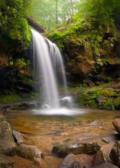 Grotto Falls is the only waterfall in The Great Smoky Mountains National Park that a person can actually walk behind.