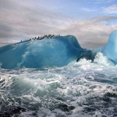 Penguins on blue icebergs near South Sandwich Islands via National Geographic