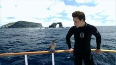 Award-Winning Documentary Director  Rob Stewart is an award-winning wildlife photographer and filmmaker. His film, Sharkwater, won the most documentary film awards in 2007, bringing in more than 30 awards at international film festivals, including a Canada's Top Ten Award at the Toronto Film Festival
