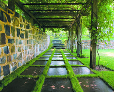 Wisteria clambers up a pergola in Water Mill, creating a shady retreat. The rough stone walls contrast with a series of bluestone slabs set simply into the grass.