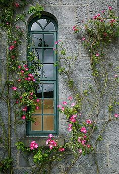 #Ireland #Window ~ Shannon, Ireland