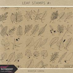 Leaf Stamps Kit #1 | digital scrapbooking | photoshop brushes, vintage, leaves, nature, fall