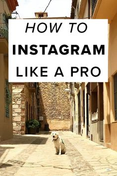 How To Instagram Like A Pro.