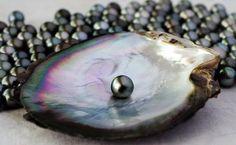 Or et façon - Bijouterie en ligne: Trouver une Perle dans huitre, ça peut vous arrive...