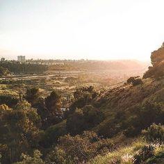 California Dreaming ✈️☀️✨ | Insta: @destinylalane