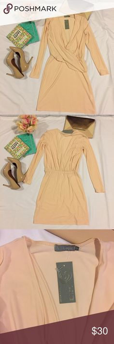 🎀 Beautiful Blush Long Sleeve V-Cut Dress Beautiful Long Sleeve Dress in a Soft Blush. Features One Sided Sweep from Shoulder to Waist. NWT❣Try pairing with Nude Heels!! 🔶Reasonable Offers Welcomed!!🔶 🔷Bundle to Save!!🔷 Dresses Long Sleeve