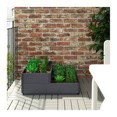 SALLADSKÅL Plantebakke  - IKEA
