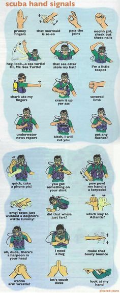 Scuba hand signals (for those with a sense of humor). Scuba Diving Quotes, Scuba Diving Gear, Cave Diving, Sea Diving, Learn To Scuba Dive, Diver Down, Hand Signals, Koh Tao, Sign Language