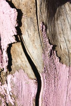 Pink Peeling Paint On Wood By Michael Chase Textures Patterns, Color Patterns, Art Grunge, Foto Macro, Peeling Paint, Color Stories, Pics Art, Natural Texture, Pink Texture