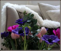 Living Interior & Flower... @bloomstil