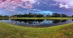 #view #sky #blue #florida #sunset #jibarosenlaluna #boricuas #streetview #familia #florida #frommybackyard #view #happyfriday #environment #ambient #planet #longlive #saveplanet #earth #equestrianneighborhood #equestrian #poloclub