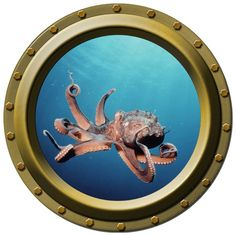 Octopus Porthole Wall Decal by WilsonGraphics on Etsy, $13.00