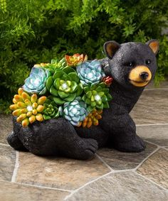 Orange & Green Succulent Bear Resin Solar Décor #zulily #zulilyfinds Orange Amps, Bear Decor, Light Colors, Garden Sculpture, Solar, Dinosaur Stuffed Animal, Succulents, Resin, Toys