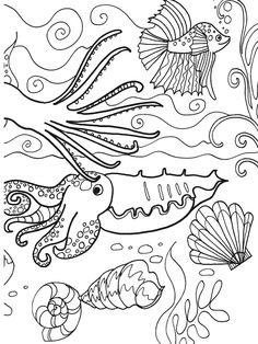 Welcome to Dover Publications  Under the Sea Adventure Coloring Book