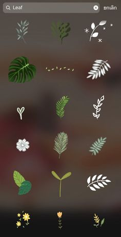 Instagram Emoji, Feeds Instagram, Iphone Instagram, Instagram Frame, Instagram And Snapchat, Insta Instagram, Instagram Story Ideas, Instagram Editing Apps, Ideas For Instagram Photos