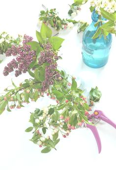 one fine day: apple blossoms + lilacs