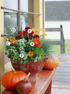 From Better Homes & Gardens, this gorgeous fall container garden encompasses so much of what I love about fall. Do you sell container gardens in your retail flower shop?