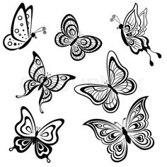 Stock image of 'set symbolical butterflies, hand-draw monochrome contours on a white background'