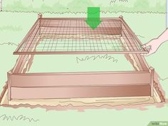 4 Ways to Build an Outdoor Turtle Enclosure - wikiHow