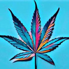 bigbudfactory:  marijuanalife