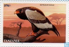 1998 Tanzania - Eagles