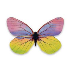 Butterfly Violet by GetKumaDesign on Etsy
