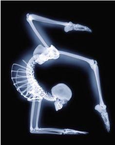 Skeleton with flair