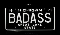 For my Michigan family State Of Michigan, Northern Michigan, Detroit Michigan, Detroit Rock City, Detroit Area, Saint Lawrence Seaway, Kid Rock Picture, Coney Dog, The Mitten State