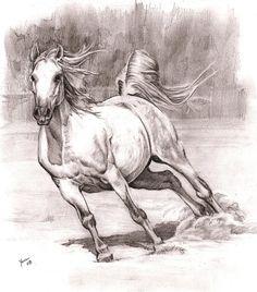 Horse Drawing Source - http://alleycatsgarden.deviantart.com/art/horse-82774240