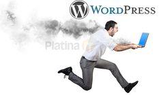 Wordpress Alert XSS