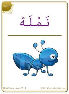 arabic flash cards - Google'da Ara