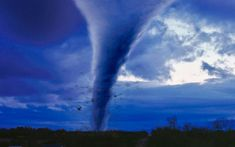 Tornado Disaster Recovery Tennessee Homes For Sale, California Real Estate, Real Estate Leads, Chamber Of Commerce, Beaches In The World, Business Networking, Panama City Panama, Lead Generation, New Construction