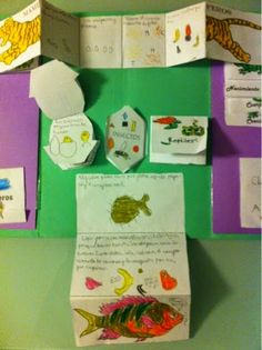 Pequeños Torresanos. Lapbook de los animales. Proyecto Con Cono y a lo Loco. School Items, Teaching Social Studies, Class Activities, Vertebrates, Project Based Learning, Animal Projects, Science For Kids, Interactive Notebooks, Ancient Civilizations