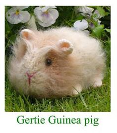 GUINEA PIG KNITTING PATTERN KNITTED TOYS   KNITTING PATTERN