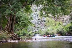 Wildlife conservation tourism project in Nam Et-Phou Louey protected area in north Laos. Nam Nern Night Safari boating experience. www.namet.otg