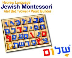TES - Largest Distributor of Jewish Software, Hebrew Language and Bible Software ()